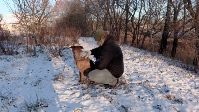Man with dog on snow video