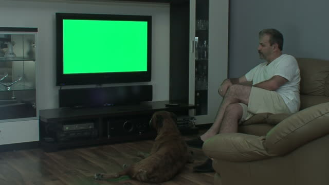 Man with dog watches TV video