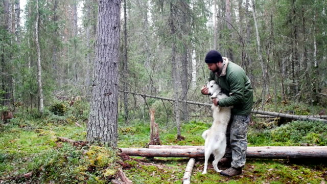 Man with his dog playing in forest video