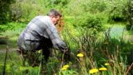 Man work in garden video