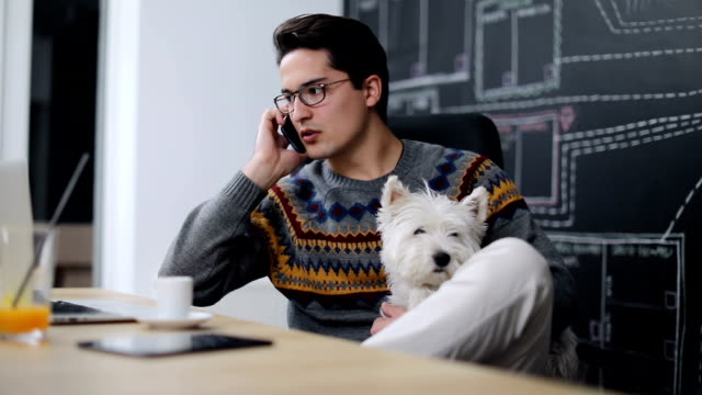 Man working in office and holding his cute dog video