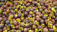 Mangosteen at a local market in Thailand video