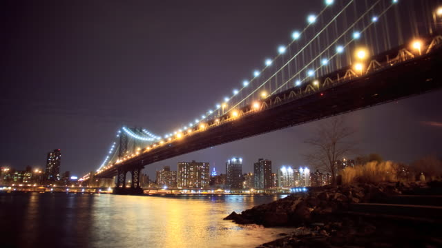 Manhattan and Brooklyn Bridge wild video