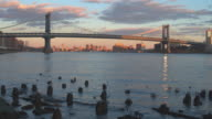 Manhattan Bridge at dusk video