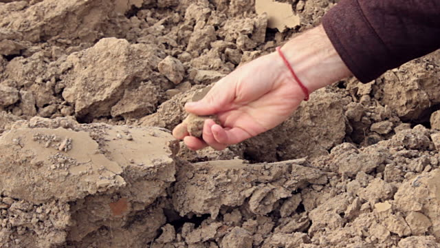 Mans checks poor quality soil. Slow motion close up video