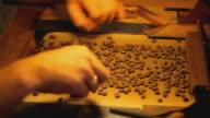 manual coffee bean selection close video