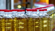 Manufacturing of sunflower oil video
