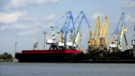 Many Cranes in the Port transshipped coals of the Vessel video