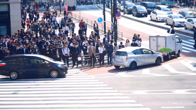 Many people passing a crossing at Shinjyuku video