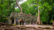 Many people visit Ta Prohm Temple, Angkor, Cambodia video