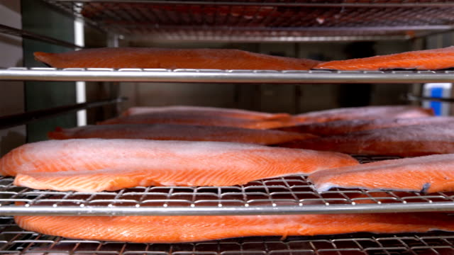 Many pieces of salmon fillet on the shelves ready for smoking. Dolly shot video
