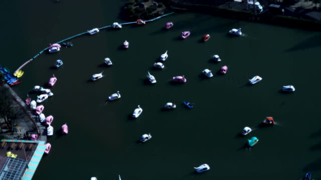 Many recreational boats run slowly at a park in Japan video