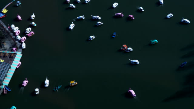 Many recreational boats run slowly on a pond video
