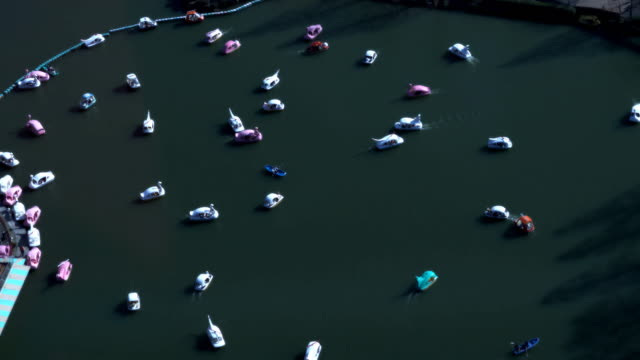 Many recreational boats running slowly at a park video