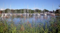 Many sailboats in the marina on the southern coast of Finland video