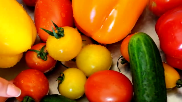 Many vegetables of various kinds lick in the sink and are ready for washing. Red and yellow tomatoes, green cucumber and yellow, red and orange pepper video