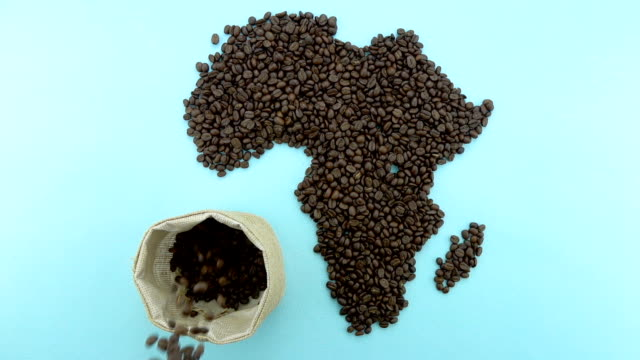 Map of the Africa made of roasted coffee beans with falling cofee beans into sack video