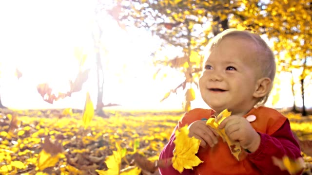 SLO MO Maple leaves falling over baby girl video