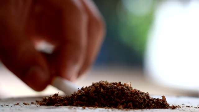 Marijuana joint cigarette video