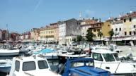 Marina and promenade in Rovinj video
