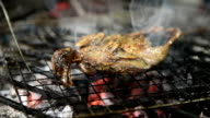 Marinated bird fried on coals barbecue food video