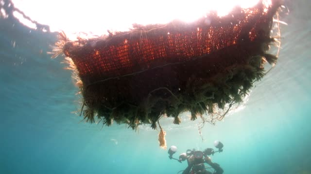 Marine waste floating on the surface video