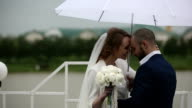 married couple walking in rainy day at terrace with umbrella video