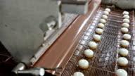 Marshmallow chocolate enrobing machine video