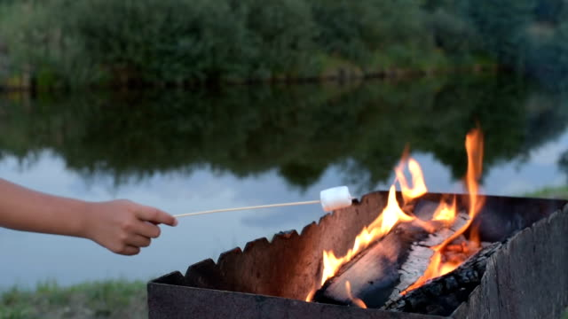 Marshmallows on camping fire video