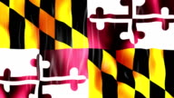 Maryland State Flag Animation video