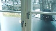 masked burglars breaking is a house video