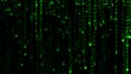Matrix of falling digital code. Seamlessly looping. Version 2 video