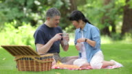Mature Asian couple having a picnic together video