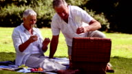 Mature couple having a picnic with white wine video