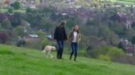 Mature Couple Taking Golden Retriever For Walk Shot On R3D video