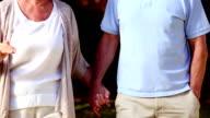 Mature couple walking video