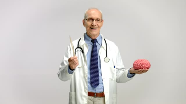 Mature doctor pointing at a brain model with a wooden stick video