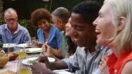 Mature Friends Enjoying Outdoor Meal In Backyard Shot On R3D video