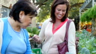 A mature Hispanic female and a mid-adult Caucasian woman talk about leafy green plants at outdoor farmer's market video