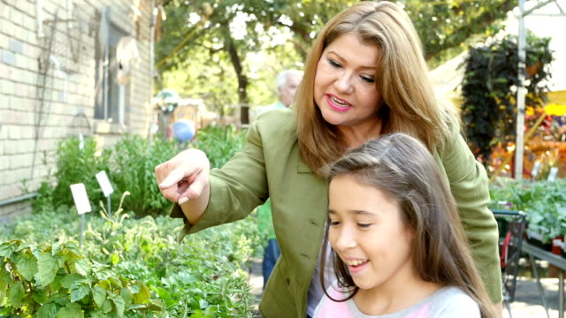 Mature Hispanic mother and her young daughter shop for herbs at a local garden center or farmer's market video