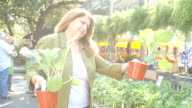 Mature Hispanic woman tries to decide which green leafy plant to purchase in farmer's market or garden center video