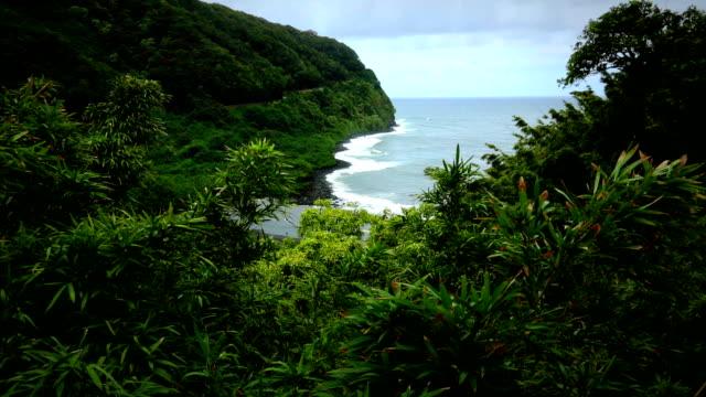 Maui Beach with Black Sand video