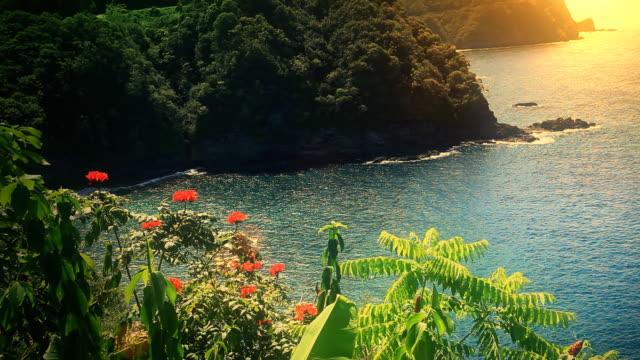 Maui, Hawaii Coast Ocean Sunset video