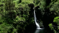 Maui, Hawaii Glidecam Water Fall video