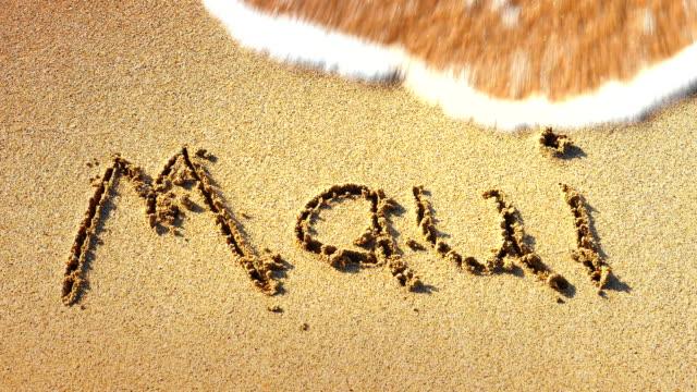 Maui Hawaii Tropical Sandy Vacation Beach, Sea Waves on Shore, Background video