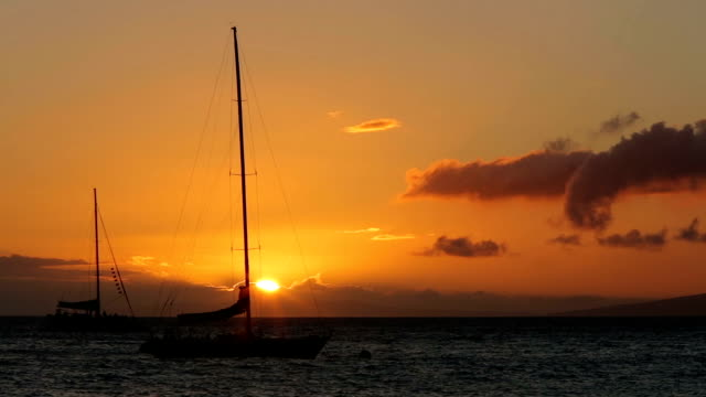 Maui Sailboats in the Sunset video