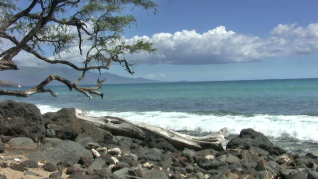 Maui Shore  (HD) video