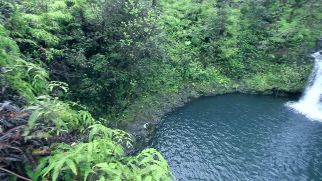 Maui Waterfall 03 video