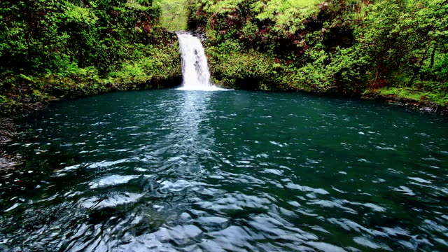 Maui Waterfall 2 video