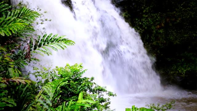 Maui Waterfall Tight Angle video
